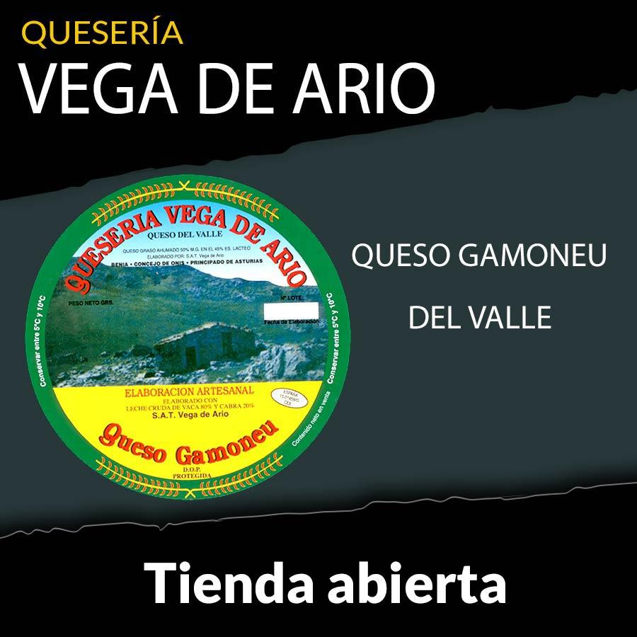Tienda Gamoneu Vega de Ario