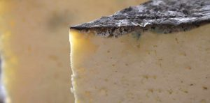 El queso gamoneu