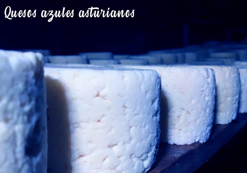 Quesos azules asturianos